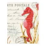 modern vintage seahorse postcard