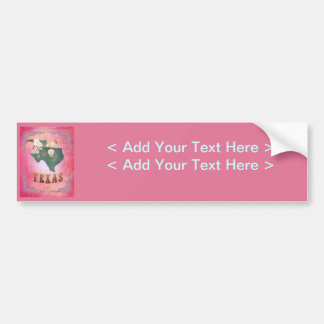 Modern Vintage Texas State Map- Candy Pink Bumper Sticker