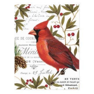Modern vintage woodland cardinal postcard
