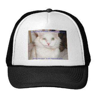 MogulFund Mesh Hats