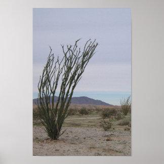 Mojave Desert Poster