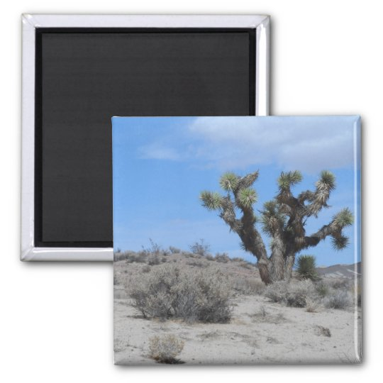 Mojave Desert Square Magnet