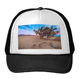 Mojave Joshua Tree Trucker Hat