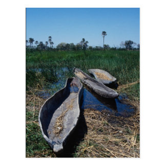Mokoro's Okavango Delta, Botswana Postcard