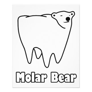 Molar Bear Polar Tooth Bear 11.5 Cm X 14 Cm Flyer
