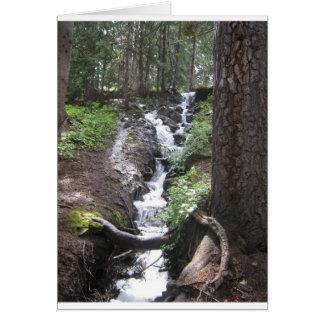 Molas Lake Waterfall Greeting Card