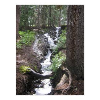 Molas Lake Waterfall Postcard