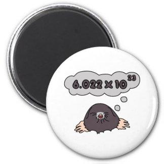 Mole 6 Cm Round Magnet