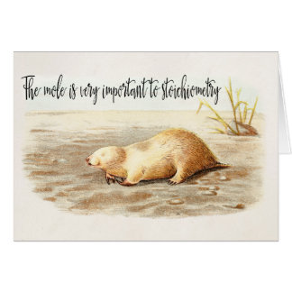 Mole Stoichiometry Chemistry Quote Science Humor Card