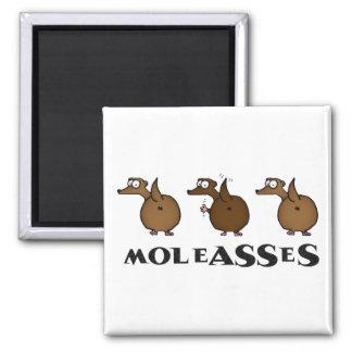 Moleasses Magnet