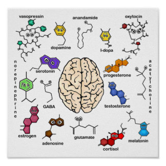 Molecule Posters | Zazzle.co.uk