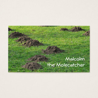 Molehills in a lawn business card