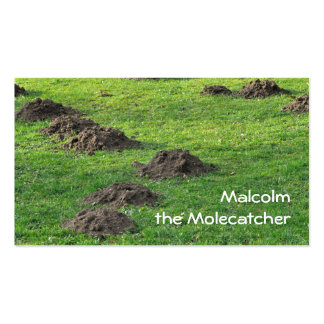 Molehills in a lawn pack of standard business cards