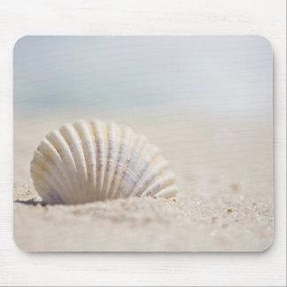 Mollusk Seashell Mouse Pad