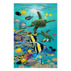 Molokini Cove Hawaiian Tropical Fish and Sea Turtl Poster