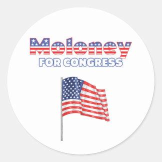 Moloney for Congress Patriotic American Flag Desig Sticker