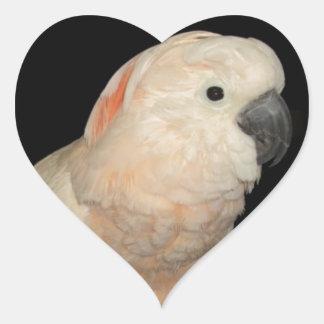Moluccan Cockatoo Parrot Design Heart Sticker