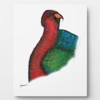 moluccan king parrot, tony fernandes plaque