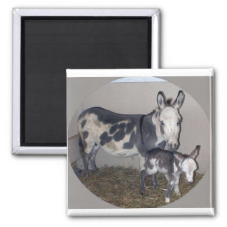 MOM AND BABY DONKEY MAGNET