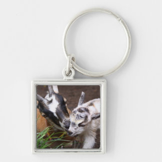 Mom and Baby Goat Silver-Colored Square Key Ring