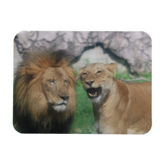 Mom and Dad Lion Flexible Magnet Flexible Magnet