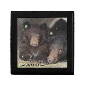Mom & cub 2013 Giftbox Gift Box