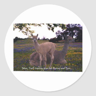 Mom I will stand by your side forever and ever! Classic Round Sticker
