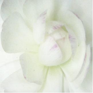 Mom s Flower Photo Cutout