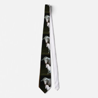Mom with Baby Goat Tie