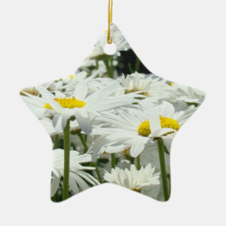 Mom You're Our Sunshine and Star! ornament gifts