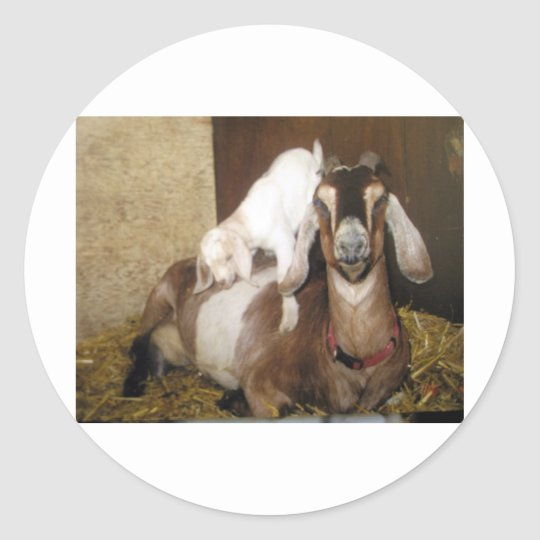 Momma and Baby Goat Classic Round Sticker