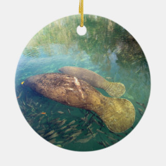 Momma and Baby Manatee Ornament