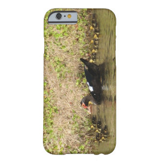 Momma Muscovy and Baby Ducks Barely There iPhone 6 Case