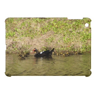 Momma Muscovy and Baby Ducks iPad Mini Cases