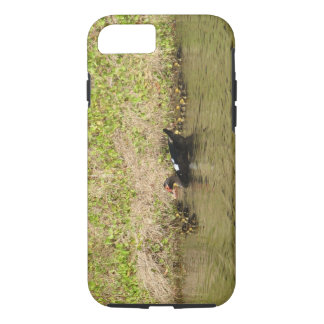 Momma Muscovy and Baby Ducks iPhone 7 Case