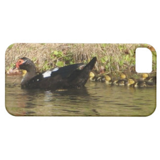 Momma Muscovy and Baby Ducks iphone case iPhone 5 Cover