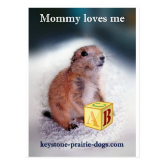 """""""Mommy loves me"""" baby clothes Postcard"""