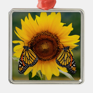 Monarch Butterfies on Sunflower Christmas Ornament