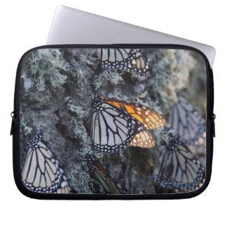 Monarch Butterflies on Pine Tree, Sierra Chincua 2 Computer Sleeve