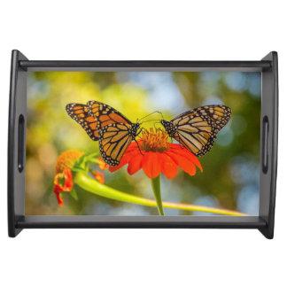 Monarch Butterflies on Wildflowers Serving Tray