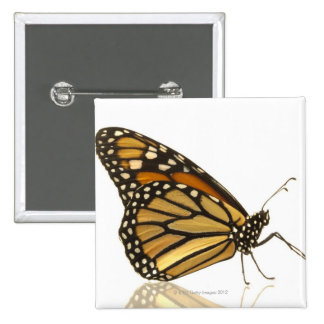 Monarch butterfly 15 cm square badge