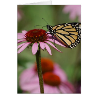 Monarch Butterfly and Black Eyed Susan Greeting Card
