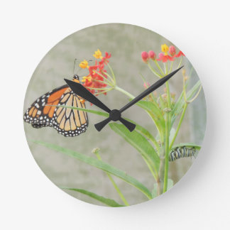 Monarch Butterfly and Caterpillar Round Clock