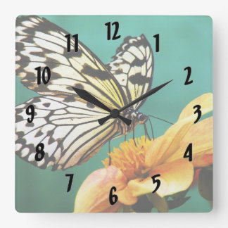 Monarch Butterfly And Orange Flower Clocks