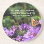 Monarch butterfly and purple flowers drink coasters