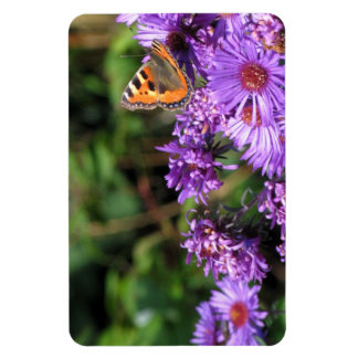 Monarch butterfly and purple flowers rectangle magnet