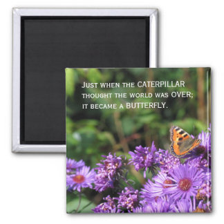 Monarch butterfly and purple flowers square magnet