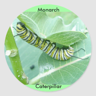Monarch Butterfly Caterpillar Stickers
