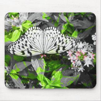Monarch Butterfly Color Splatter Mousepads