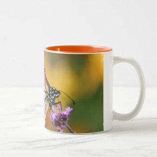 Monarch Butterfly In Search of Pollen Mug